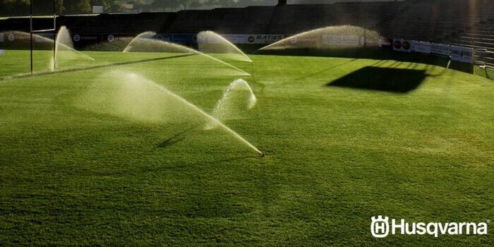 C mo plantar c sped los requisitos para una buena siembra for Como evitar que salga hierba en el jardin