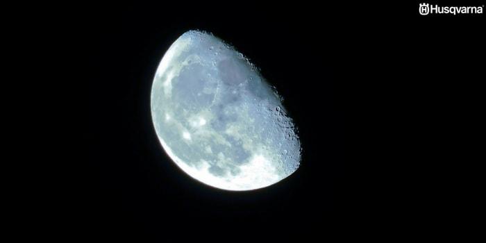 Cómo influye la luna en el sector agrícola? Todo lo que necesitas saber.