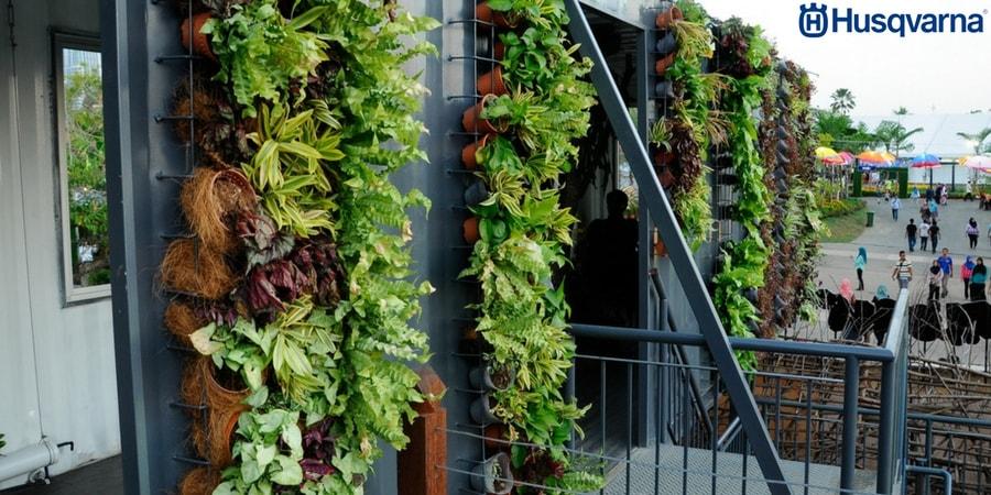 Cultiva tus propias verduras y hortalizas en los huertos for Imagenes del huerto vertical