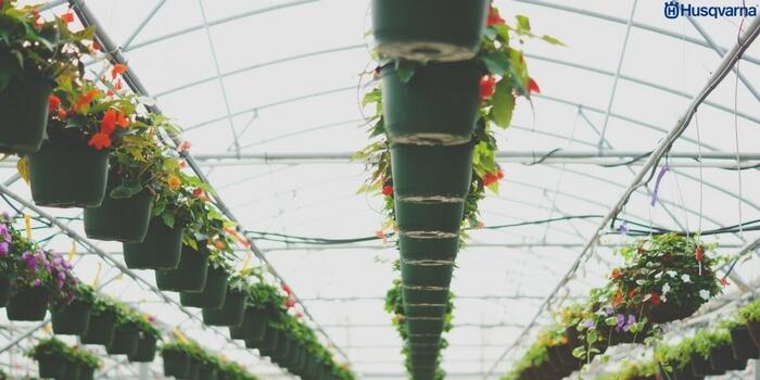 Controla y protege tus plantaciones con los invernaderos for Viveros caseros