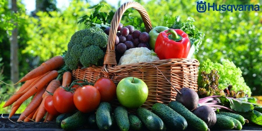 Frutas y verduras de temporada: Todos los productos de este 2018