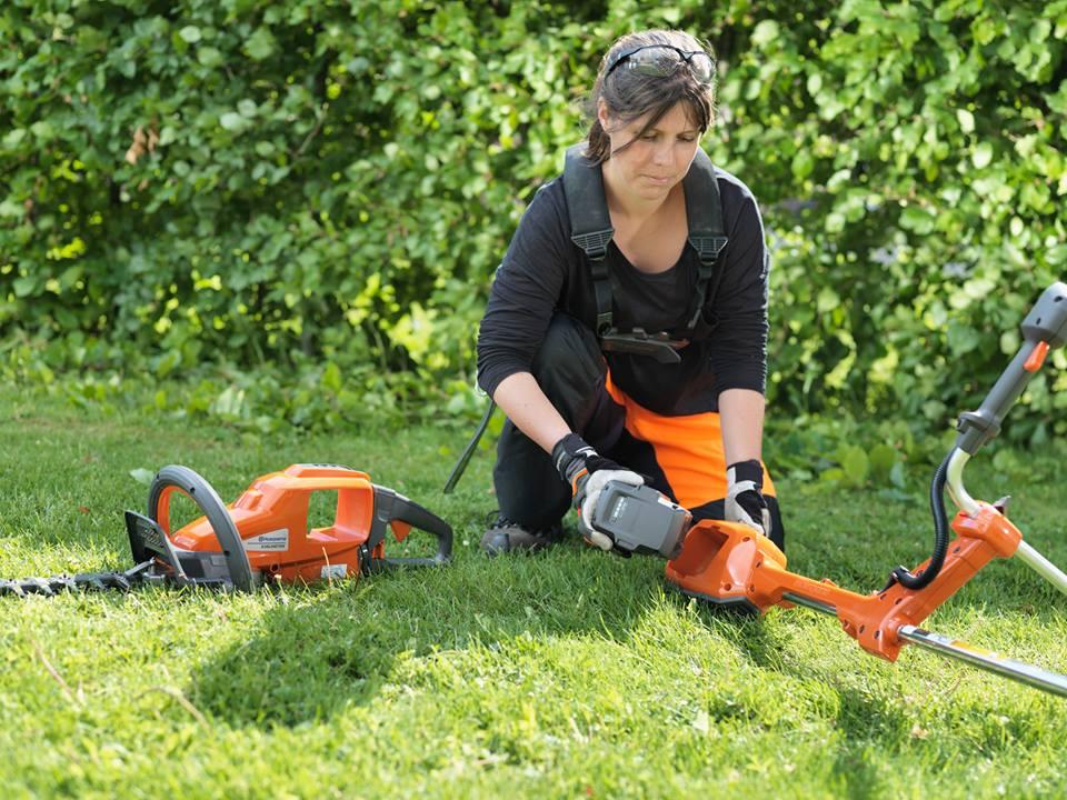 10 cuidados b sicos para el jard n en oto o - Cuidado de jardines ...