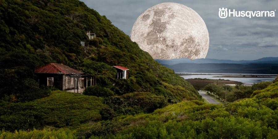 ¿Cómo influye la luna en el sector agrícola? Todo lo que necesitas saber