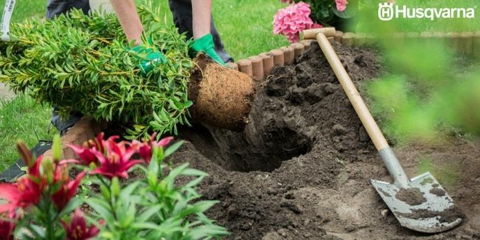 cavar-hoyo-jardín