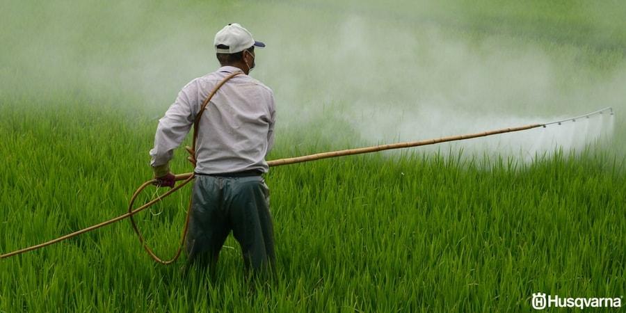 Fungicida: El tratamiento perfecto contra enfermedades y plagas