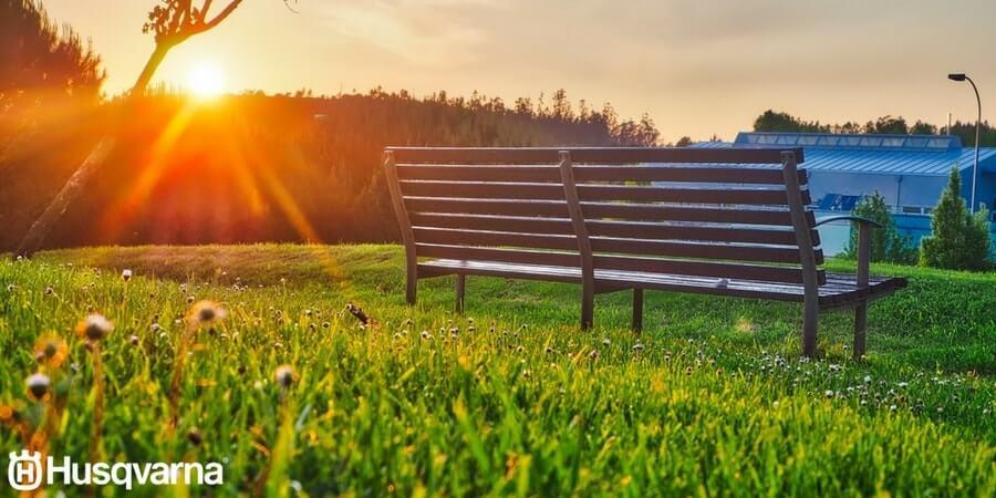 ¿En busca del jardín perfecto? Escarificar el césped es la clave