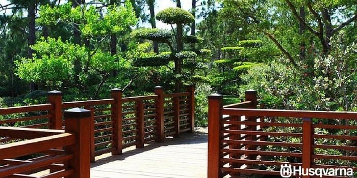 jardín-japonés-puente-árboles