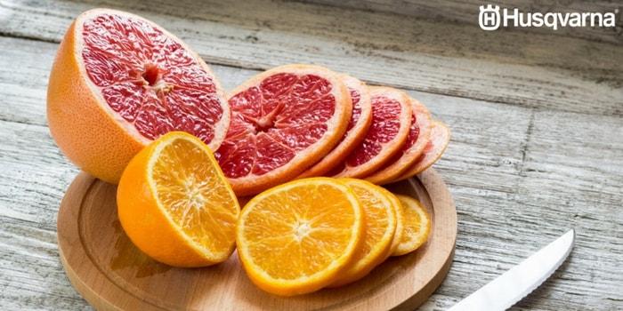 pomelos-naranjas