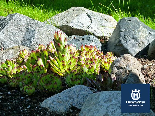 rocas-jardín