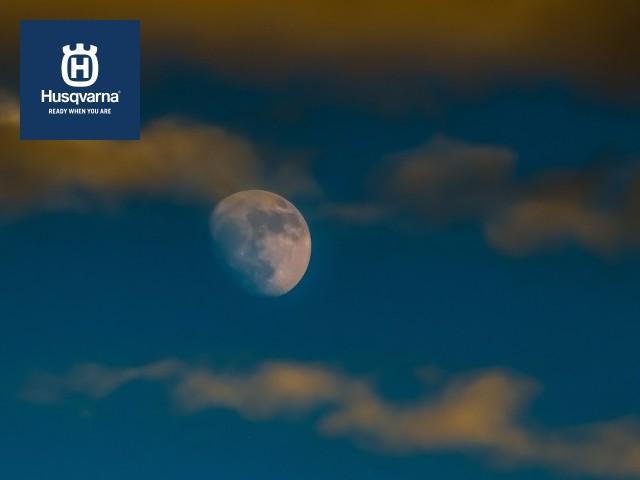 Descubre cómo las fases lunares y la Luna pueden afectar a tus cultivos.