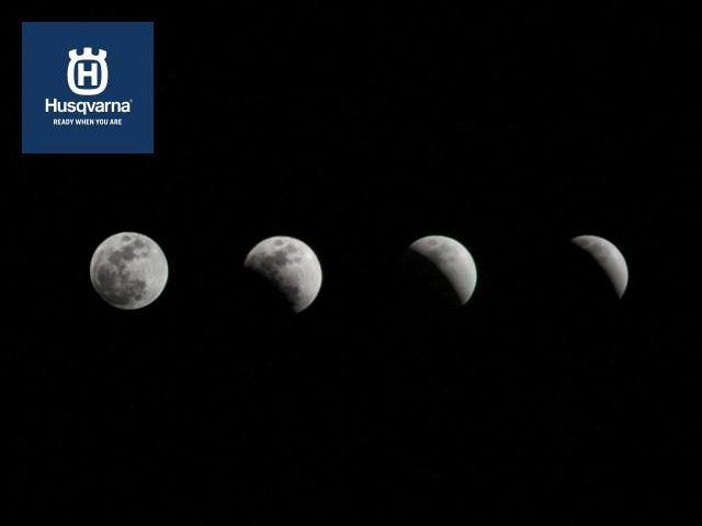 Descubre cómo las fases lunares y la Luna pueden afectar a ...